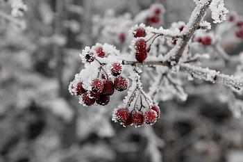 Winterdepression behandeln
